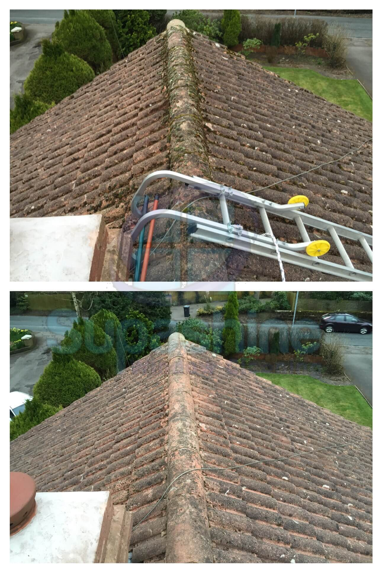 Roof Moss Removal Supashine Window Cleaning